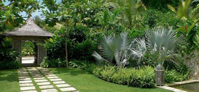 Progettazione giardini i consigli per realizzare uno for Progettazione giardini roma