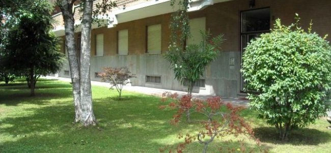 Giardino condominiale e manutenzione a chi spetta - Giardino condominiale ...